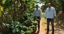 Jaime Fortuno and Lester Marin inspecting the Plantations.jpg