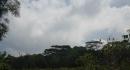 kona-parry-estate-visit-part2-039