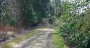 kona-parry-estate-visit-part2-041