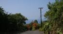 kona-parry-estate-visit-part2-071