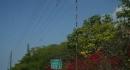 kona-parry-estate-visit-part2-078